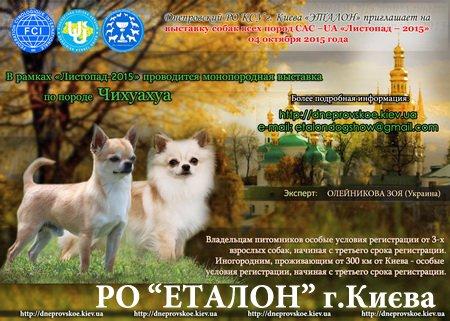 Днепровский РО КСУ