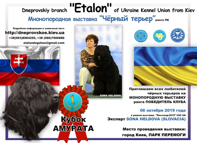 05-06.10.2019 Дніпровський РО КСУ
