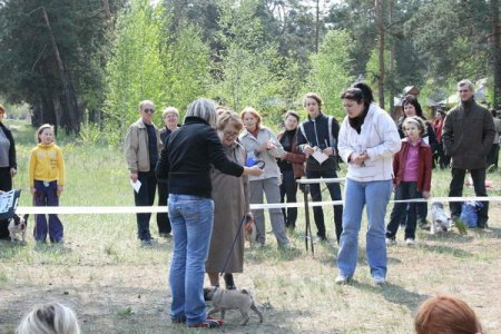 """Племсмотр """"Весна-2009"""""""
