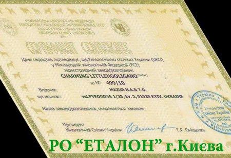 Как зарегистрировать название приставки (питомника) в FCI